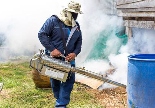 Pest Control Services Can Get Rid Of Pests Quickly And Efficiently!